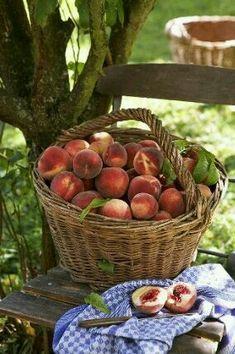 Can't wait for peach season.