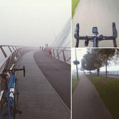 The morning commute - foggy foggy foggy.
