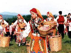 Women picking roses dressed in Bulgarian costumes