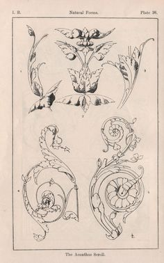 This is an introduction to the subject of how to draw the Acanthus. The study of Nature has informed Design in ways more profound than mere...
