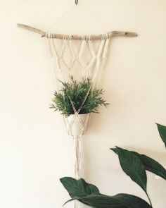 A lovingly handmade macrame plant hanger for your beloved plants! This driftwood measures macrame approx at widest point by long. Please note this plant hanger is made to order so the driftwood may vary. I will do my very best to find a Deco Nature, Indoor Planters, Macrame Projects, Plant Holders, Hanging Plants, Plant Decor, Plant Hanger, Diy And Crafts, Weaving