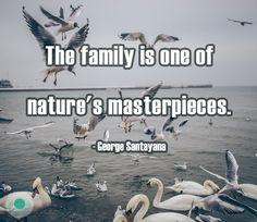 Nature's Aphorisms #65