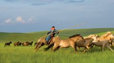 images Mongol mongolian history steppes - Google Search
