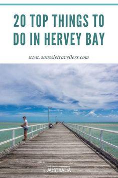 20 fabulous things to do in Hervey Bay Melbourne, Sydney, Brisbane, Coast Australia, Visit Australia, Queensland Australia, Western Australia, Travel Guides, Travel Tips
