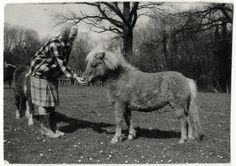 Foto från Joja Lewenhaupts arkiv. Joja (Carl Johan) Lewenhaupt 1916-2001 grundade Svenska Ponnyryttarförbundet 1954. Han var också den som tog islandshästen till Sverige. Arkivet förvaras på Landsarkivet i Lund.