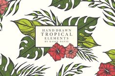 Hand Drawn Tropical Vector Elements - Illustrations