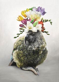Freesia Kahlo by Jane Crisp - Art Prints New Zealand The Pleasure Garden, Evans Art, Nz Art, Wall Art For Sale, Sleeping Dogs, Contemporary Artwork, Beautiful Birds, New Zealand, Fine Art Prints
