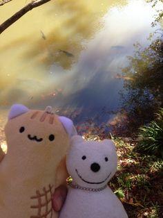 クマ散歩:小松寺に品行方正なクマ出没 The Bear entered the Komatsu-ji Temple!♪☆(^O^)/