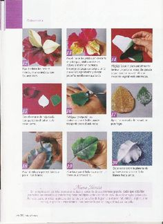 PORCELANA FRÍA: rosas para yessica « Variasmanualidades's Blog