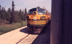 Rode on the Ontario Northland Polar Bear Express to Moosenee and Moose Factory on James Bay. Polar Bear Express, Places To Travel, Places To Visit, Railroad Pictures, Canada Eh, Light Rail, Present Day, Ontario, Vintage Photos