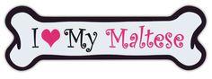 Pink Dog Bone Magnet: I Love My Maltese