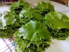 Lettuce, Herbs, Vegetables, Food, Essen, Herb, Vegetable Recipes, Meals, Yemek