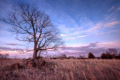 Kasota Prairie Sunset by Jordan Powers