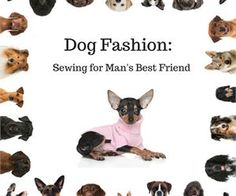 Dog Fashion: Sewing for Man's Best Friend