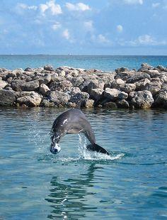 Nassau, Bahamas! I want to go back!<3