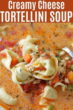 Creamy Cheese Tortellini Soup is filled with vegetables and ground turkey for a hearty and nutritious soup that kids love. | Foodtastic Mom #soup #souprecipes #tortellinirecipes #tortellinisoup Cheese Tortellini Soup, Tortellini Recipes, Pasta Recipes, Quick Soup Recipes, Peach Syrup, Creamy Cheese, Clean Eating Snacks, Appetizers, Mom