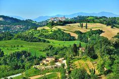 Vineyard, River, Outdoor, Google, Italia, Outdoors, Vine Yard, Vineyard Vines, Outdoor Games
