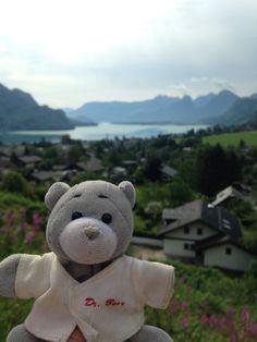 Dr. Bear drives through the Salzkammergut region outside of Salzburg.