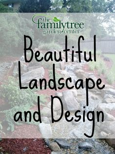 Steps To A Successful Landscape | The Family Tree Garden Center,  Snellville, GA | Landscape U0026 Design | Pinterest | Gardens, Trees And The  Family