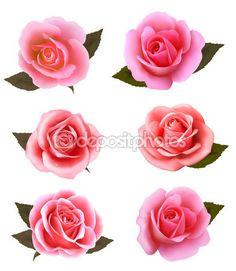 Conjunto de lindas rosas cor de rosa. Vector. — Ilustração de Stock #54011039