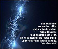 Tripura Rahasya 8.32  #yoga #advaita #vedanta #tantra
