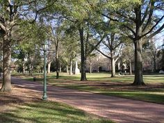University of South Carolina Horseshoe