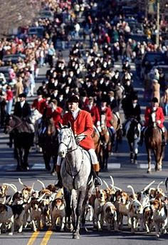 My son used to ride with the Middleburg Hunt! I'd watch him ride his horse through town before casting off for the Hunt. Christmas in Middleburg, VA