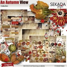 Save 40% off An Autumn View Collection