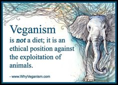 what is veganism #vegan