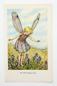Wild Thyme Fairy Picture Supplies nursery by PeonyandThistlePaper