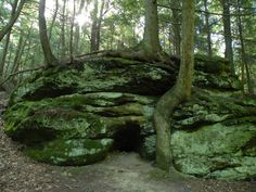 9. Ridge-Creekside Loop (Clear Creek Metro Park) - 12 Trails In Ohio You Must Take If You Love The Outdoors