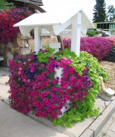 Wave Purple Classic Petunias cascade over the side of a vinyl wishing well (with built-in self-watering Gro-System). They look great alongside lime green sweet potato vine. Outdoor Planters, Outdoor Gardens, Flowers Perennials, Planting Flowers, Wishing Well Garden, Side Yard Landscaping, Backyard Patio, Potato Vines, Outside Decorations