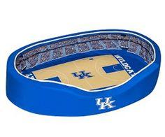 NCAA Kentucky Wildcats Official Pet Stadium Crib - Small Kentucky Basketball, Kentucky Wildcats, Nhl Jerseys, Sport Outfits, Cribs, Nfl, Pets, Sports Apparel, Stuff To Buy