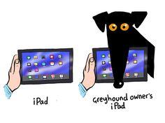 IPad with pup
