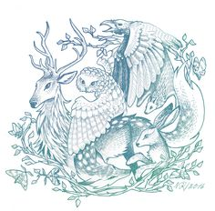 forest animals illustration Artwork Display, Forest Animals, Artist Names, Great Artists, Drawings, Illustration, Woodland Animals, Woodland Creatures, Illustrations