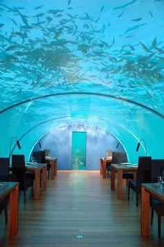 Il #ristorante sottomarino del Conrad Resort...non c'è limite all'immaginazione maldiviana...