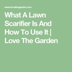 What A Lawn Scarifier Is And How To Use It | Love The Garden