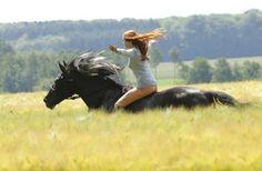 Ostwind – ein Film nicht nur für Pferdemädchen!!!   Lest hier die Filmkritik für den neuen Pferdefilm