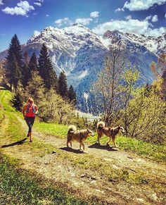 with Huskys - #Photo @teresa_egal  run Teresa ruuuun! - Welcome to #RunnerLand  Lets follow us & tag #RunnerLand in your photos for featured  -