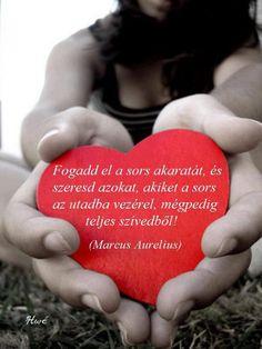 """""""Fogadd el a sors akaratát, és szeresd azokat, akiket a sors az utadba vezérel, mégpedig teljes szívedből!"""" (Marcus Aurelius, római császár) - A kép forrása: IdézetGyár.hu"""