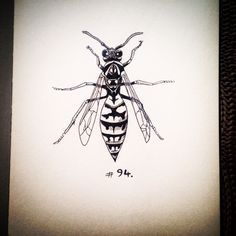 Wasp Tattoo flash and Illustrations on Pinterest