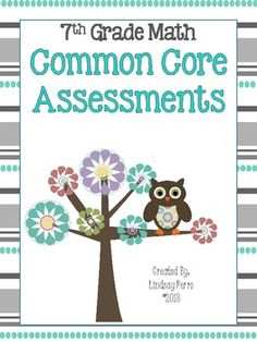 This resource contains a one page assessment for each 7th grade math common core standard. A total of 24 assessments are included, each containing 5 to 8 questions.  Great to use as homework, a quiz or review before testing!