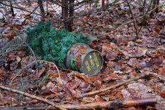 Rohrbombe by Nordlichter4, via Flickr