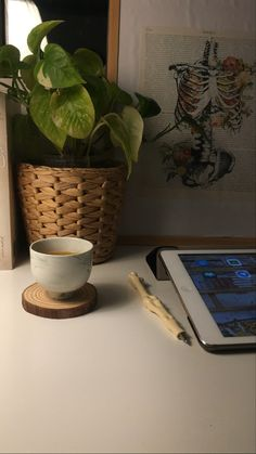 Blue Aesthetic Pastel, Sky Aesthetic, Flower Aesthetic, Black Aesthetic Wallpaper, Aesthetic Wallpapers, Rose Gold Brushes, Coffee Meme, Wood Wick Candles, Coffee Photos