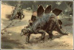 Stegosaurus   Zdeněk Burian (1905-1981)   Prehistoric Animals (1960)