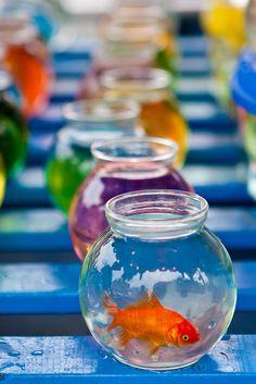 Just goldfish, all of us by ranzino, via Flickr