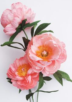 Flower Bouquets, Crepe Paper, Creations, Coral, Paper Crafts, Charmed, Plants, Projects, Flowers
