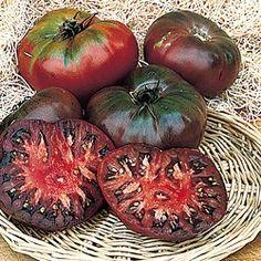 Cherokee purple tomatoes 2014 garden