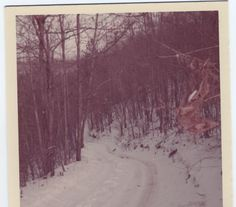 Road on Thousand Sticks, Leslie County, KY, FNS, 1973, photo by Gabrielle Beasley/Rita Birgen Ray, Rita Birgen Ray photo. Beech Fork Nursing Center steps, FNS. Anyone with photos or stories about FNS, please email me. Compiling history!