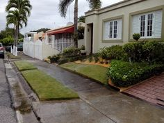 Mis creaciones mis patios desde puerto rico